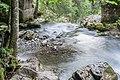 Cascade d'Ardent 01.jpg