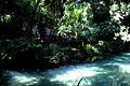 Caserta jardín inglés. 03.JPG