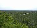 Castle Rock-Forest View.jpg
