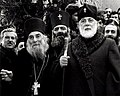 Catholicos-Patriarch of All Georgia Ilia II.jpg