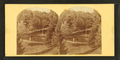 Cemetery--Springfield, from Robert N. Dennis collection of stereoscopic views.png
