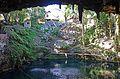 Cenote Zací 02.jpg
