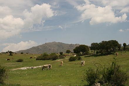 Velocità datazione Highlands Ranch