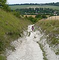 Chalk path - panoramio.jpg