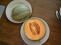 Charentais-Melone.jpg