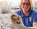 Charles M. Russell National Wildlife Refuge, MT (6109853105).jpg