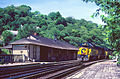 Chessie freight train at B&O Harpers Ferry Station.jpg