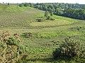 Chibden Bottom, Ibsley Common, New Forest - geograph.org.uk - 186532.jpg