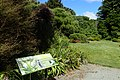 Christchurch Botanic Gardens kz11.jpg