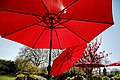 City of London Cemetery and Crematorium ~ Café red umbrellas.jpg