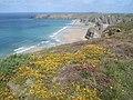 Clifftop at Carnewas Point - geograph.org.uk - 561883.jpg