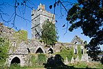 Clonmines Friary South Range 2010 09 27.jpg