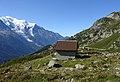 Cmamonix - building on meadow.jpg