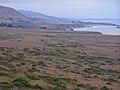 Coastalprairieabovegoatrockarea.jpg