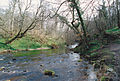 Colinton Dell, Edinburgh, Feb 1991 (6691400399).jpg