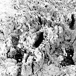 Columbia Glacier, serac Close-Up, March 29, 1984 (GLACIERS 1463).jpg
