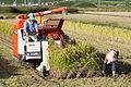 Combine harvester Kyoto JPN 001.jpg