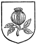Fig. 495.—Pomegranate.