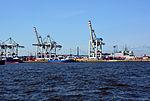 Container Terminal Tollerort 01.jpg