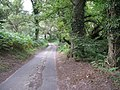 Country Lane towards Hesworth Farm - geograph.org.uk - 1453530.jpg