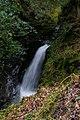 County Wicklow - Glendalough - 20190219014942.jpg
