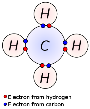 Covalently bonded hydrogen and carbon in a mol...