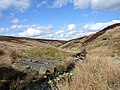 Cross Gill - geograph.org.uk - 159554.jpg