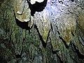 Cueva de Valporquero.014 - Vegacervera (Leon).jpg