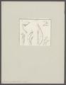 Cuma scorpioides - - Print - Iconographia Zoologica - Special Collections University of Amsterdam - UBAINV0274 097 11 0002.tif