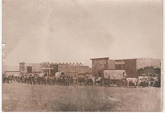 Custer, South Dakota - Oxen-drawn freight team entering Custer in 1876