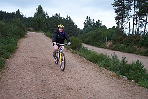 English: Cycling in Glenmore Forest. Cycling i...