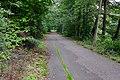 Cyklostezka Ohře u Královského Poříčí (4).jpg