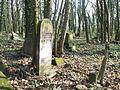 Czestochowa cmentarz zydowski 08.jpg