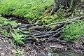 Dülmen, Naturschutzgebiet -Franzosenbach-, Strotbach -- 2014 -- 0029.jpg