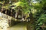 Dai Jingu(Cha Soumei)-Shrine in Yuyadani, Ujitawara, Kyoto August 5, 2018 05.jpg