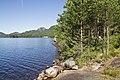 Dalsvatn - panoramio (1).jpg