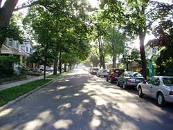Looking east down Milverton Boulevard, a residential road in East Danforth