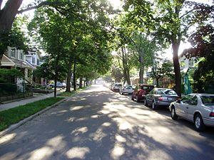 East Danforth - Looking east down Milverton Boulevard, a residential road in East Danforth