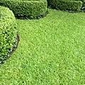 Daniel Pavon Cuellar Nature Works.jpg