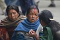 Darjeeling 4.jpg