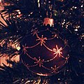 December 14th. Christmas Tree (8272866027).jpg