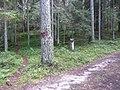 Degučių sen., Lithuania - panoramio (169).jpg