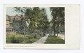 Delaware Ave., Buffalo, N. Y (NYPL b12647398-62752).tiff