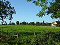 Deopham Countryside - geograph.org.uk - 3333.jpg