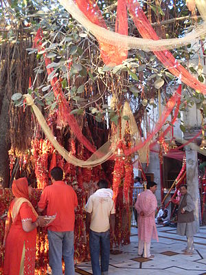 Chintpurni - Devotees tie red crimson threads on making a wish, and come back and untie when fulfilled