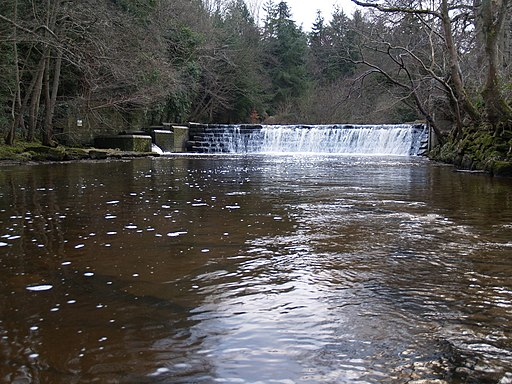 Dilston Weir and Fish Ladder on Devil's Water - geograph.org.uk - 1721058