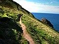 Dinas Island coast path, approaching Needle Rock - geograph.org.uk - 536589.jpg