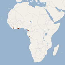 Distribution of Casinycteris ophiodon.png