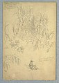Drawing, A Detailed Study of a Seated Man and a Group of Plants, Ecuador, 1857, probably May (CH 18202251).jpg