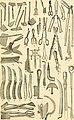 Dreer's garden calendar - 1884 (1884) (14596394378).jpg